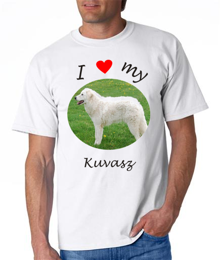 Dogs - Kuvasz Picture on a Mens Shirt